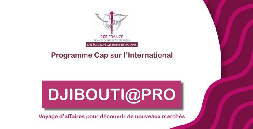 France Scellés, voyage d'affaire à Djibouti